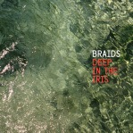 10. Braids - Deep In the Iris
